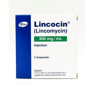 Lincocin Inj 300mg 5Ampx1ml